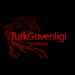 İnternetin Görünmez Yüzü: Turk Guvenligi