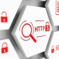 850.000'den Fazla Web Sitesi Hala TLS 1.0 ve 1.1 Protokollerini Kullanmaya Devam Ediyor