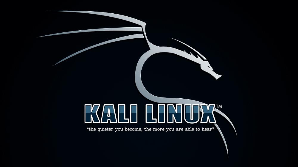 Kali Linux Nasıl Kolayca Kurulur?
