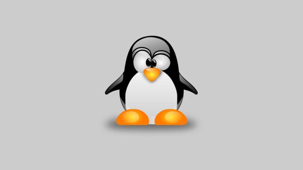 Linux'ta Node.js Nasıl Kurulur?