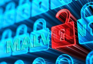 MalVuln Fidye Yazılımları Hakkında Açılan Bilgi Sitesi Kuruldu!