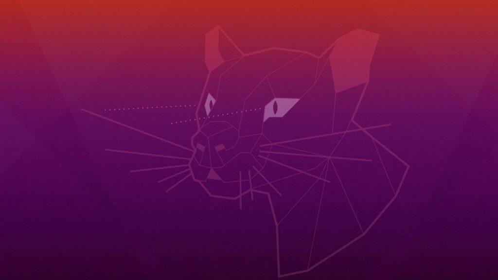 Ubuntu Linux Üzerinde Tor Tarayıcı Nasıl Kurulur?