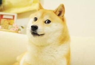Dogecoin Nasıl Satın Alınır?