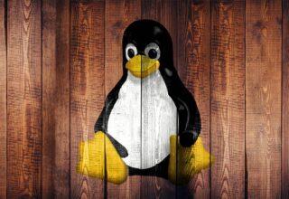 Kali Linux 2021.1 Yeni Özelliklerle Çıktı