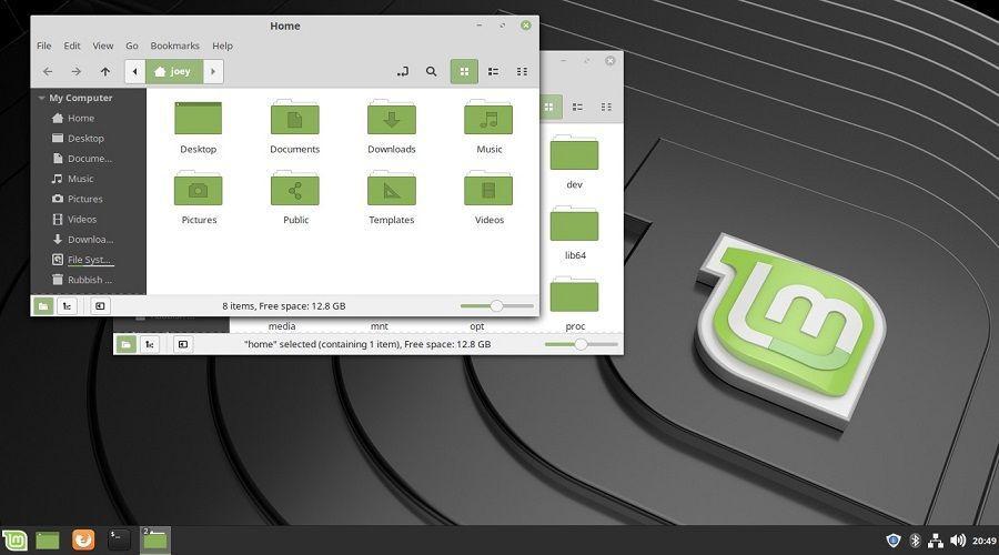 linux mint15