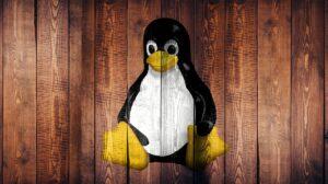 Linux'ta En Son Edge Chromium Beta Nasıl Kurulur?